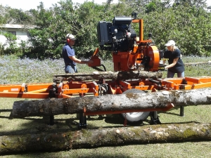 Sawmill at work